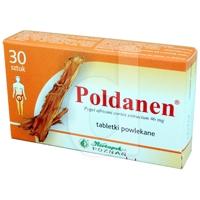 Poldanen